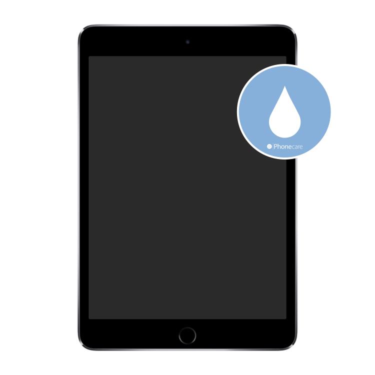 Flüssigkeitsschaden (Diagnose) iPad mini 3