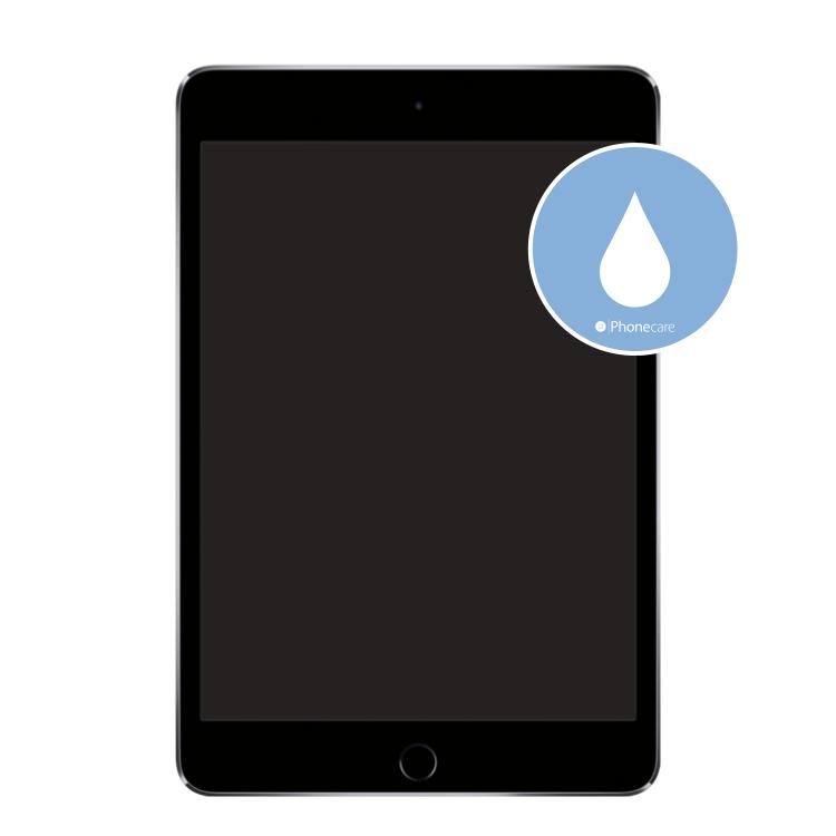 Flüssigkeitsschaden (Diagnose) iPad mini 4