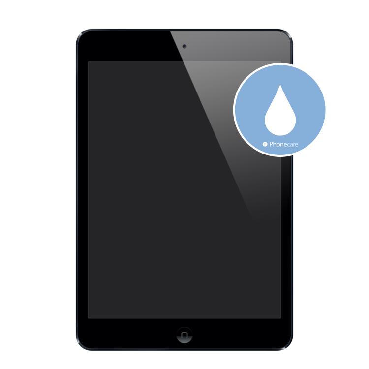 Flüssigkeitsschaden (Diagnose) iPad mini