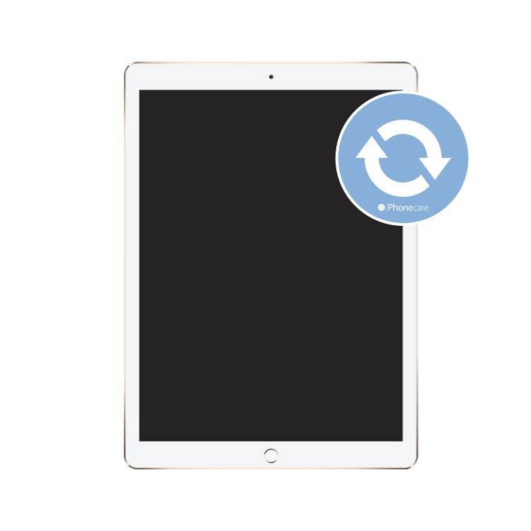 Datenübertragung iPad Pro 1 (12.9)