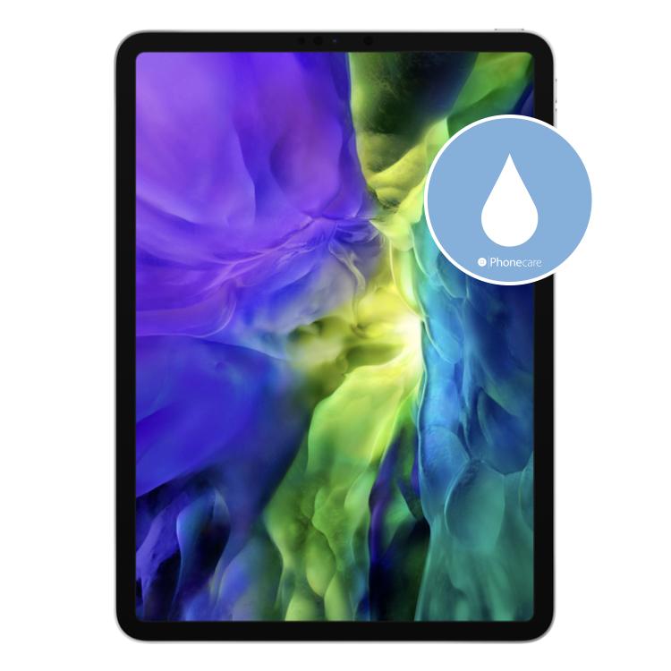 Flüssigkeitsschaden (Diagnose) iPad Pro 2 (11.0)